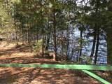 17628 Wheeler Lake Lane - Photo 2