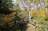 1529 Fox Trail - Photo 40