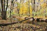 1529 Fox Trail - Photo 42