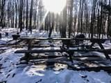 5002 Bear Paw Road - Photo 22
