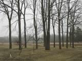 E4640 Pheasant Road - Photo 12