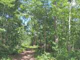 14430 Hills Pond Lane - Photo 13