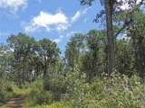 14430 Hills Pond Lane - Photo 18