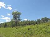 14430 Hills Pond Lane - Photo 29