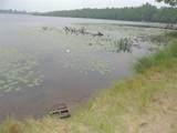 13319 Anderson Lake Lane - Photo 16