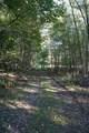 4281 Pine Tree Road - Photo 35