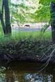 4281 Pine Tree Road - Photo 39
