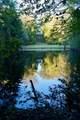 4281 Pine Tree Road - Photo 40