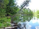 15003 Shadow Lake Lane - Photo 15