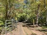 14091 Ranch Lake Drive - Photo 5