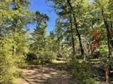 14091 Ranch Lake Drive - Photo 7