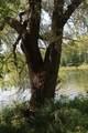 N837 Spring Lake Estates Drive - Photo 40