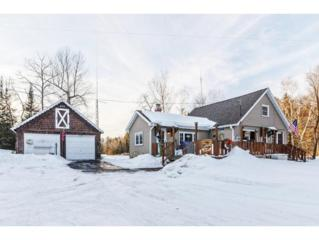 17289 Pinkowsky Ln, Lakewood, WI 54138 (#50157819) :: Todd Wiese Homeselling System, Inc.
