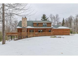 14685 Lakeview Ln, Lakewood, WI 54138 (#50158184) :: Todd Wiese Homeselling System, Inc.