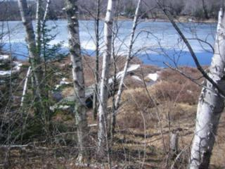 Little Long Lake, Wabeno, WI 54566 (#50162163) :: Dallaire Realty