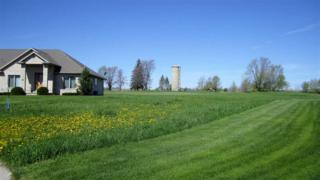 618 Linksview, Wrightstown, WI 54180 (#50163190) :: Dallaire Realty