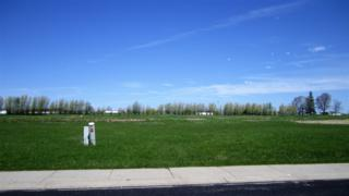 532 Royal St Pats, Wrightstown, WI 54180 (#50164007) :: Dallaire Realty