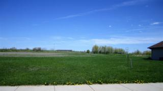 508 Royal St Pats, Wrightstown, WI 54180 (#50164010) :: Dallaire Realty