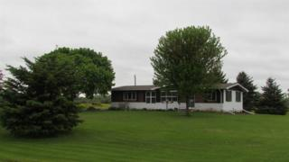 9362 Morgan Marsh, Oconto Falls, WI 54154 (#50164759) :: Dallaire Realty