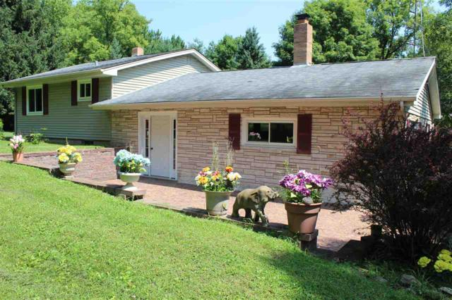 N3420 Constance Road, Waupaca, WI 54981 (#50189651) :: Dallaire Realty