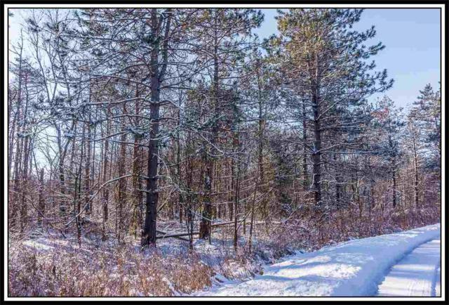 Oakwood Pass, New London, WI 54961 (#50133361) :: Todd Wiese Homeselling System, Inc.
