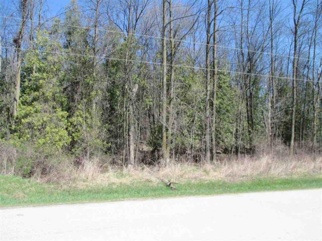 Hawk Road, Algoma, WI 54201 (#50162072) :: Symes Realty, LLC