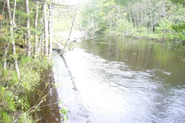 Loon Rapids Road, Mountain, WI 54149 (#50164563) :: Dallaire Realty