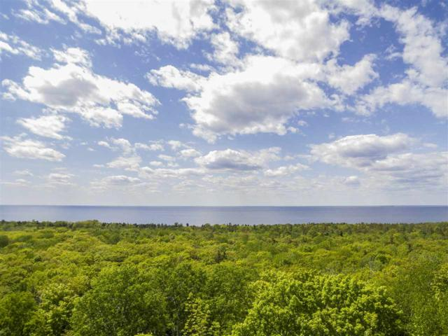 Bluff Ledge Road, Sturgeon Bay, WI 54235 (#50164799) :: Todd Wiese Homeselling System, Inc.