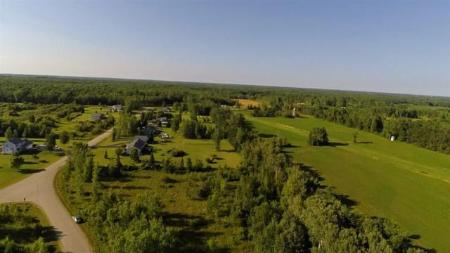 Maple Ridge Circle, Sobieski, WI 54171 (#50168684) :: Symes Realty, LLC