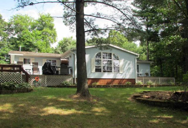 W7449 White River Trail, Wautoma, WI 54982 (#50169776) :: Dallaire Realty
