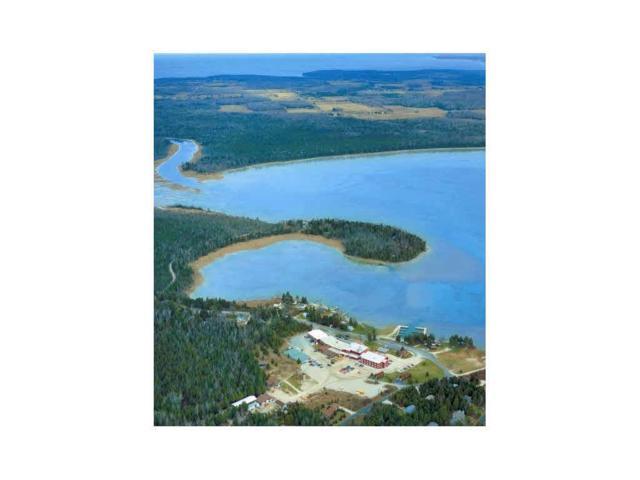 1041 Hwy Zz, Ellison Bay, WI 54210 (#50169954) :: Dallaire Realty