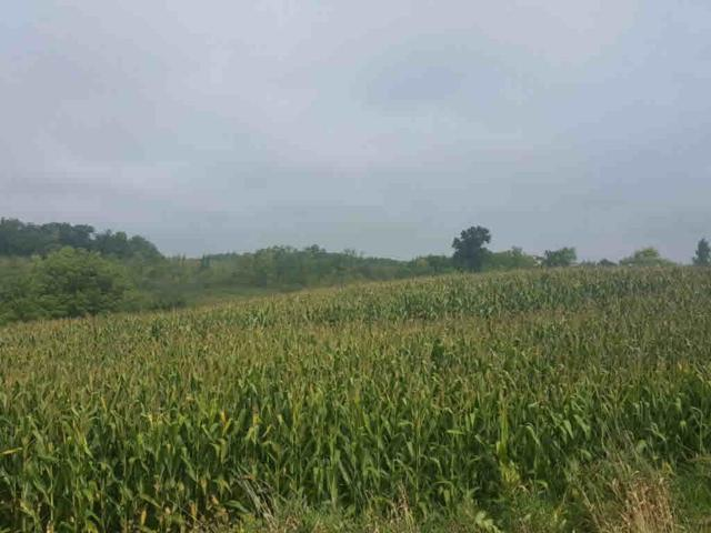 Airport Road, Campbellsport, WI 53010 (#50170676) :: Symes Realty, LLC