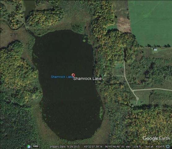 6817 N Shamrock Lake Road, Hawkins, WI 54530 (#50170879) :: Dallaire Realty
