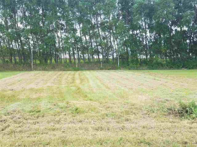 Royal St Pats Drive, Wrightstown, WI 54180 (#50171200) :: Dallaire Realty