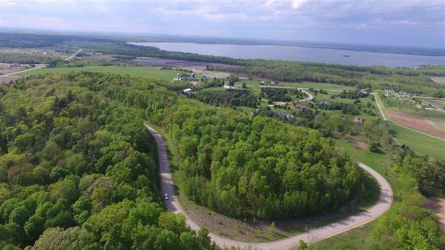 Oak View Drive, Shawano, WI 54166 (#50171529) :: Symes Realty, LLC