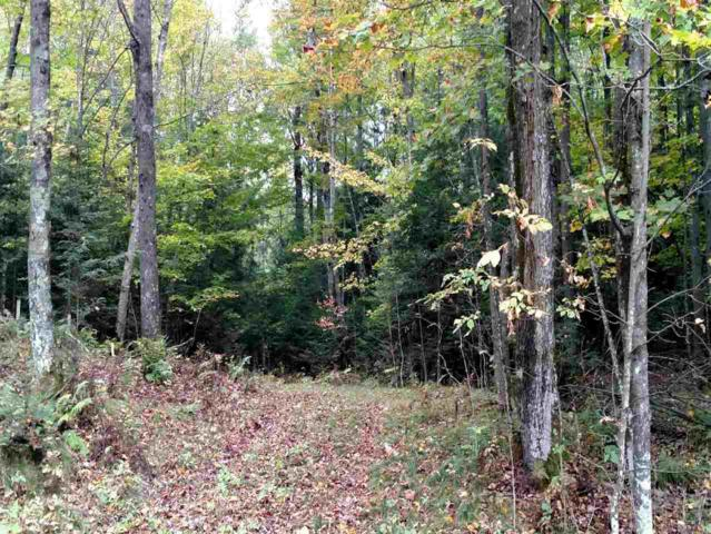 9469 Woodhaven Road, Pickerel, WI 54465 (#50172520) :: Dallaire Realty