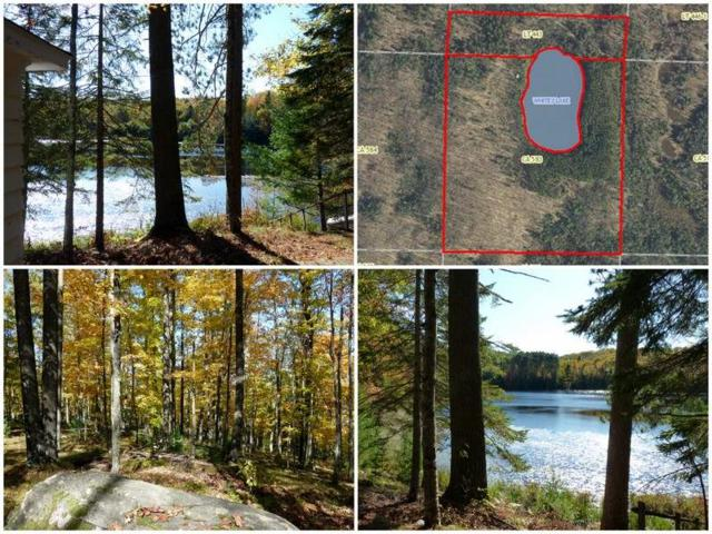 8333 Fawn Lake Road, Harshaw, WI 54529 (#50173367) :: Todd Wiese Homeselling System, Inc.