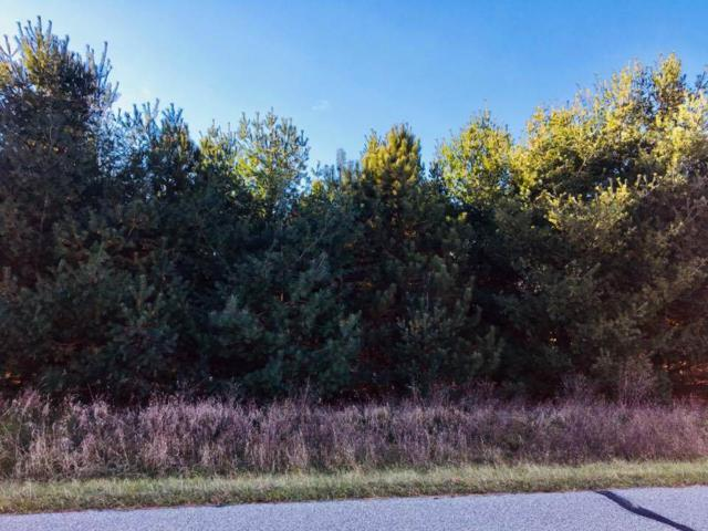 17TH Drive, Wild Rose, WI 54984 (#50174521) :: Dallaire Realty