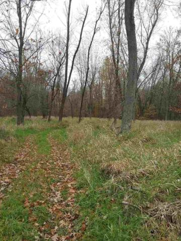 Driftwood Lane, New London, WI 54961 (#50175197) :: Dallaire Realty