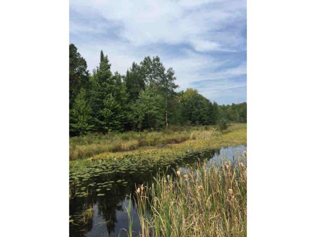 Bear Lake Road, Wabeno, WI 54566 (#50175284) :: Symes Realty, LLC
