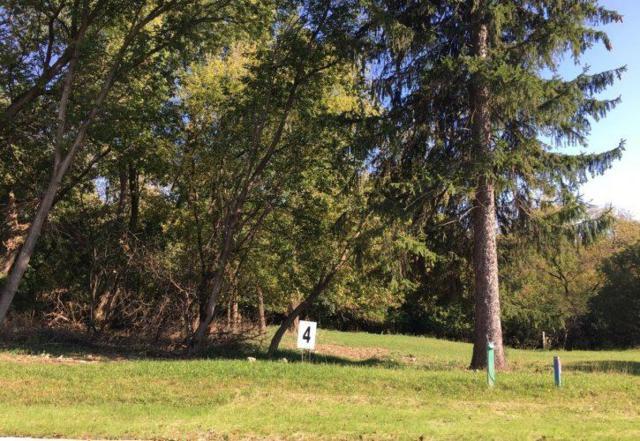 Forestbrook Lane, Appleton, WI 54914 (#50175307) :: Todd Wiese Homeselling System, Inc.