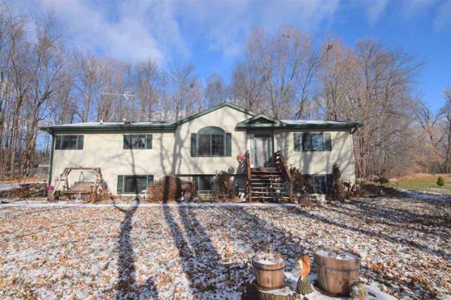 E5630 Butternut Ridge Road, Weyauwega, WI 54983 (#50175679) :: Todd Wiese Homeselling System, Inc.