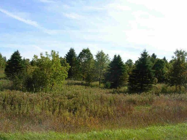 Archer Road, Wild Rose, WI 54984 (#50175908) :: Dallaire Realty