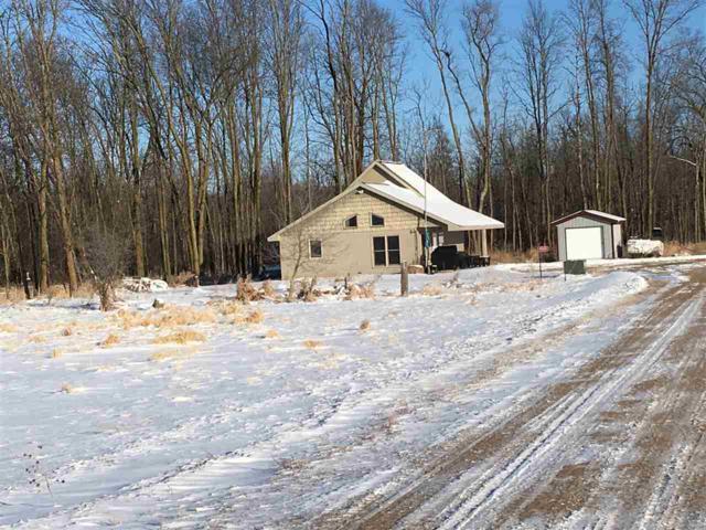 9401 Mud Lane, Clintonville, WI 54929 (#50177579) :: Symes Realty, LLC