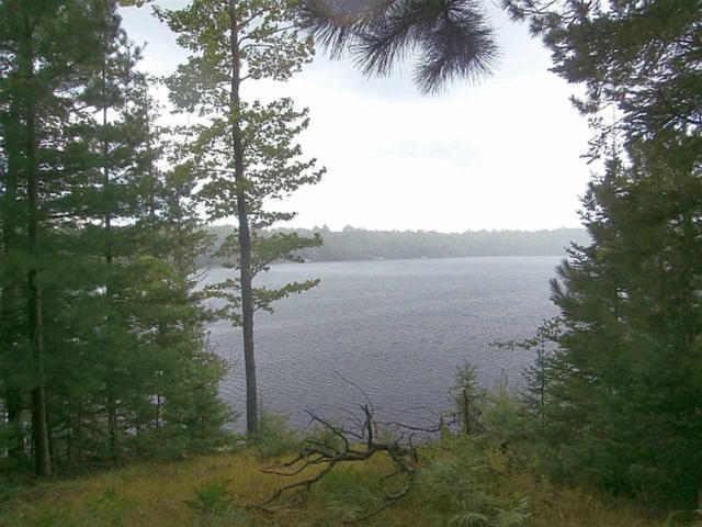 Bear Lake Road, Wabeno, WI 54566 (#50177674) :: Symes Realty, LLC