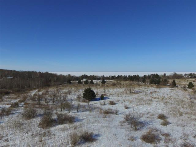 Bluff Court, Sturgeon Bay, WI 54235 (#50177682) :: Dallaire Realty