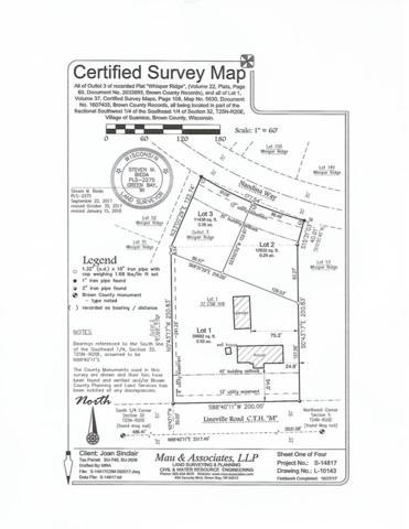 Nandina Way, Green Bay, WI 54313 (#50177935) :: Dallaire Realty