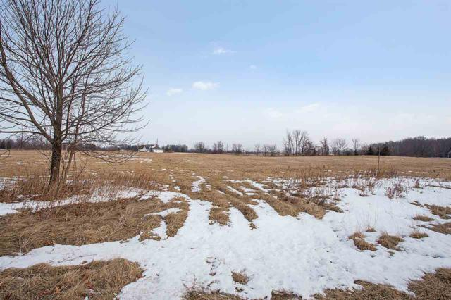 Storm View Court, Luxemburg, WI 54217 (#50177967) :: Dallaire Realty