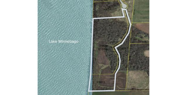 Twilight Beach Road, Chilton, WI 53014 (#50178015) :: Todd Wiese Homeselling System, Inc.