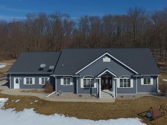 N9976 Quarterline Road, Marion, WI 54950 (#50178536) :: Dallaire Realty